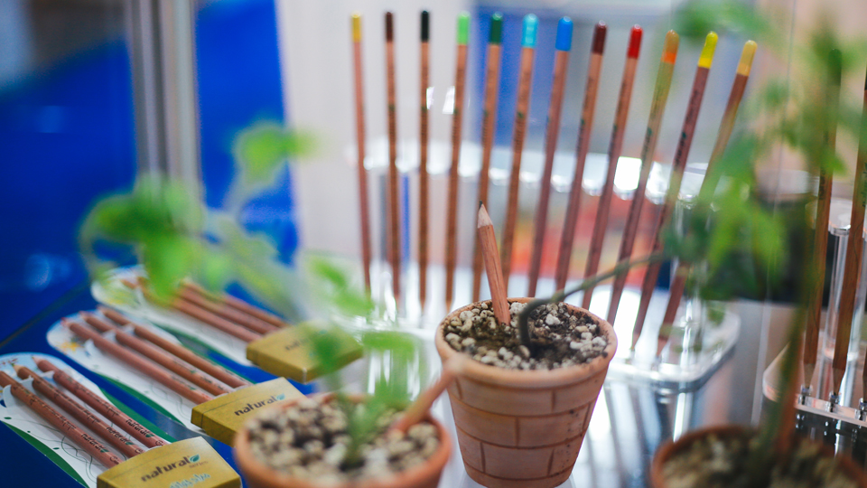 plantable pencils in pot at paperworld middle east